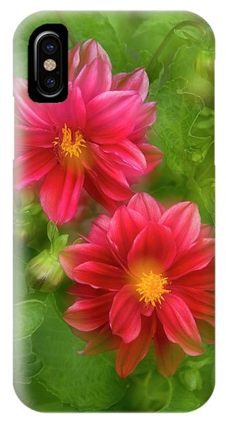 Whidbey iPhone Case - Usa, Washington, Whidbey Island by Jaynes Gallery