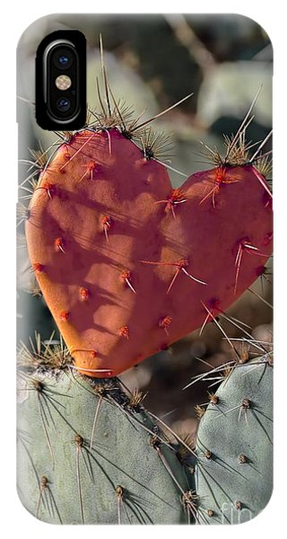 Valentine Prickly Pear Cactus IPhone Case