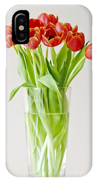 Vase Of Tulips IPhone Case