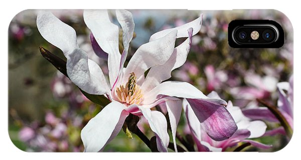Velvet IPhone Case
