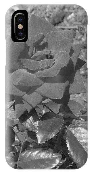 iPhone Case - Velvet Rose by Pharris Art