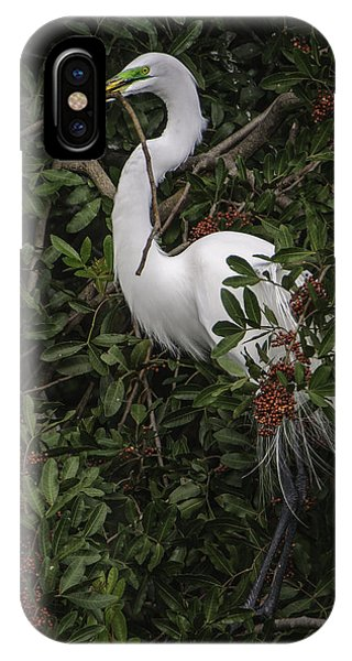 Venice Rookery Egret IPhone Case