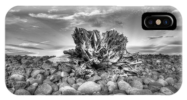 Ventura River Tree IPhone Case