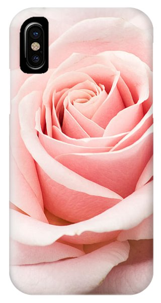 Vertical Pink Rose IPhone Case