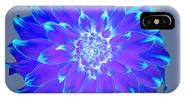 Vibrant Blue And Purple Dahlia On Grey Phone Case by Rosemary Calvert