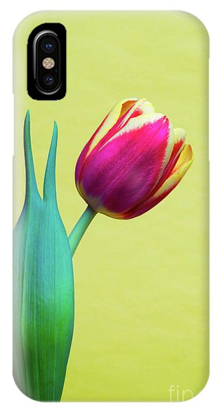 Vibrant Tulip Peace Sign   IPhone Case