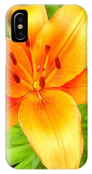 Vibrant Phone Case by Wide Awake Arts