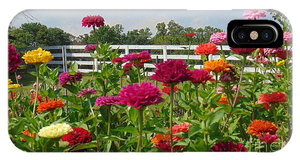 Vibrant Zinnia Garden IPhone Case