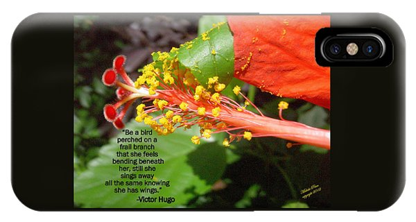 Victor Hugo IPhone Case