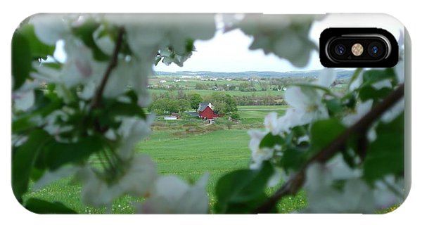View Through Apple Blossoms IPhone Case