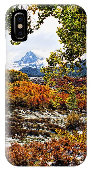 Viewed Through The Aspen Leaves IPhone Case