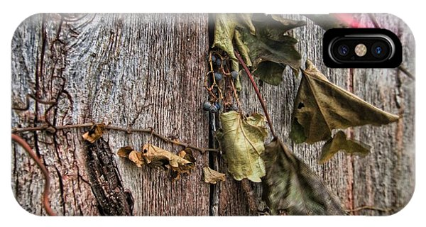 Vines And Barns IPhone Case