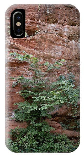 Vines And Canyon Walls IPhone Case