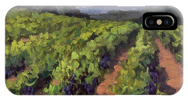Vineyard At Dentelles IPhone Case