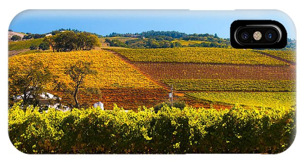 Vineyard Colors IPhone Case