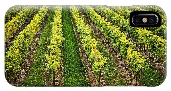 Horticulture iPhone Case - Vineyard by Elena Elisseeva