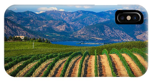 Vineyard In The Mountains IPhone Case