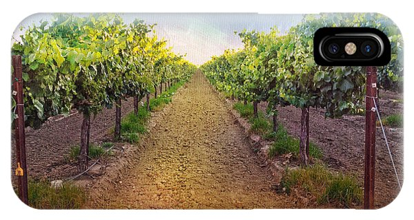 Vineyard Road IPhone Case