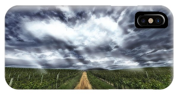 Vineyard Walk IPhone Case