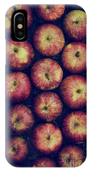 Autumn iPhone Case - Vintage Apples by Tim Gainey