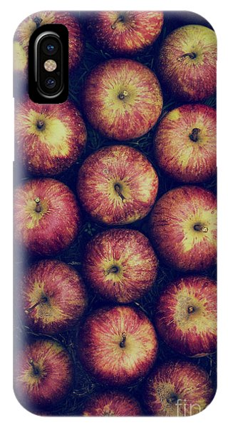 Autumn iPhone X Case - Vintage Apples by Tim Gainey