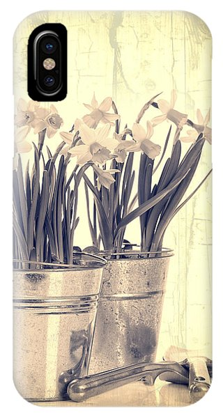 Vintage Daffodils IPhone Case
