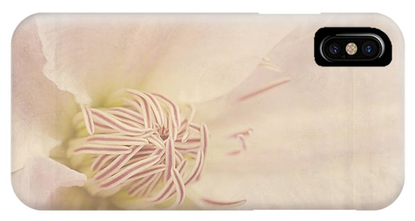 Vintage Flower Art - A Beautiful Place IPhone Case