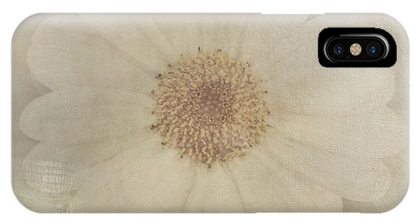 Vintage Painterly White Daisy  IPhone Case