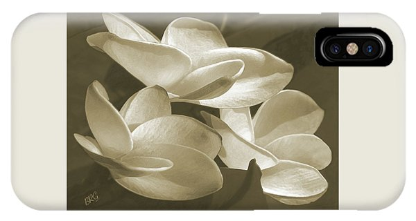 Vintage Plumeria Trio IPhone Case