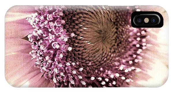 Sunflower Seeds iPhone Case - Vintage Sunflower  by Marianna Mills