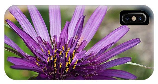Violet Flower Phone Case by Carlos V Bidart