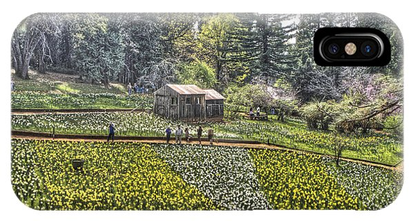 Visitors On Daffodil Hill IPhone Case