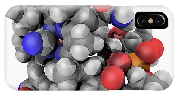 Organic Matter iPhone Case - Vitamin B12 Cobalamin Molecule by Laguna Design/science Photo Library