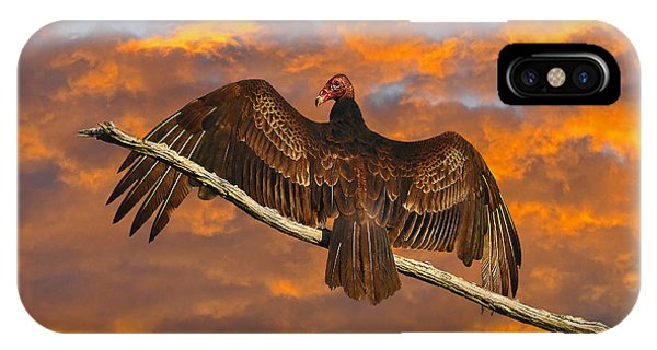 Vivid Vulture IPhone Case
