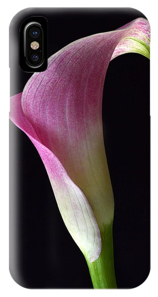 Volute Calla IPhone Case
