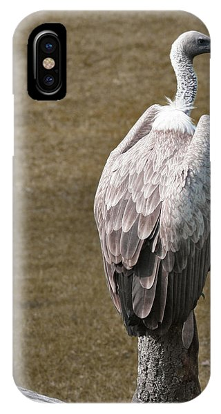Vulture On Guard IPhone Case