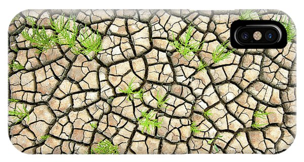 Growth iPhone Case - Wadden Sea Structures by Piet Haaksma