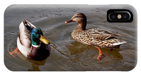 Duck iPhone Case - Wading Ducks by Rona Black