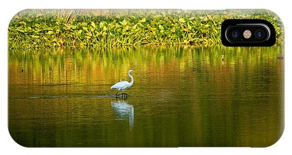 Wading Egret IPhone Case