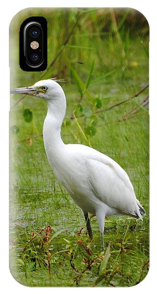 Wading Heron IPhone Case