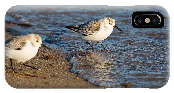 Wading Sanderlings IPhone Case