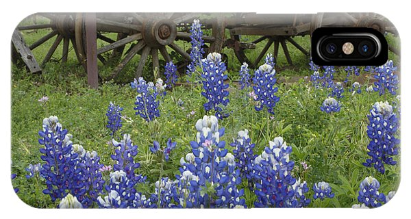 Wagon With Bluebonnets IPhone Case