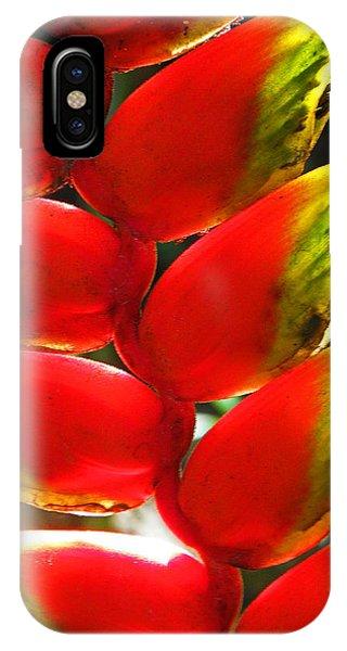 Waimea Flowers Iv IPhone Case
