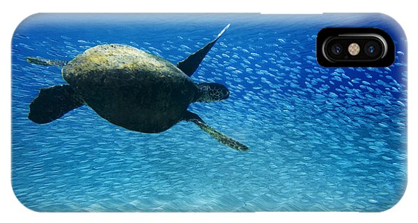 Waimea Turtle IPhone Case