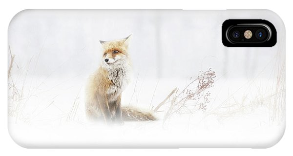 Frost iPhone Case - Waiting... by Doris Reindl
