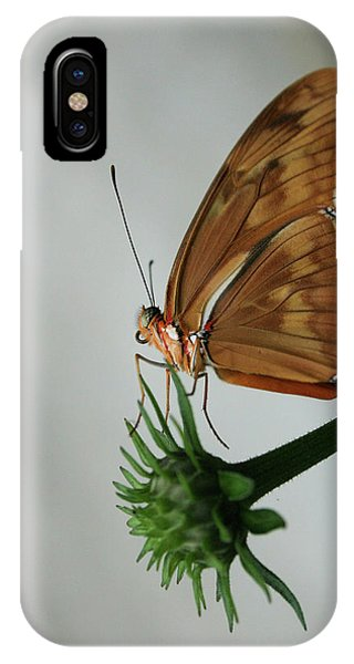 Butterfly Waiting On The Wind  IPhone Case
