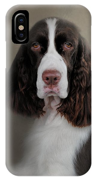 Waiting Patiently - English Springer Spaniel IPhone Case