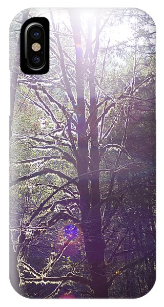 Walking In The Woods IPhone Case