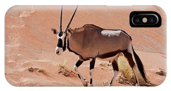 Ostrich iPhone Case - Walking Male Oryx (oryx Gazella by Jaynes Gallery