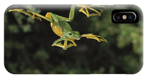 Wallaces Flying Frog IPhone Case